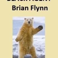 Black Agent by Brian Flynn